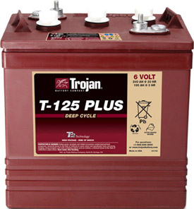 Ắc quy TROJAN 6V-240 Ah T-125 Plus Deep-Cycle Battery (Made in USA)